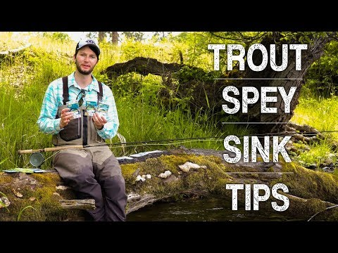Understanding Sink Tips for Trout Spey | Ashland Fly Shop